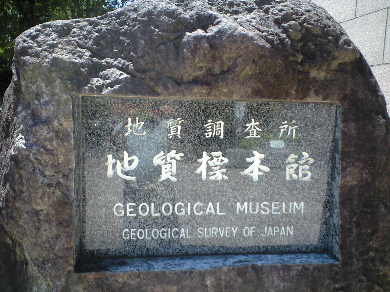 夏休み科学企画第2弾 地質標本館