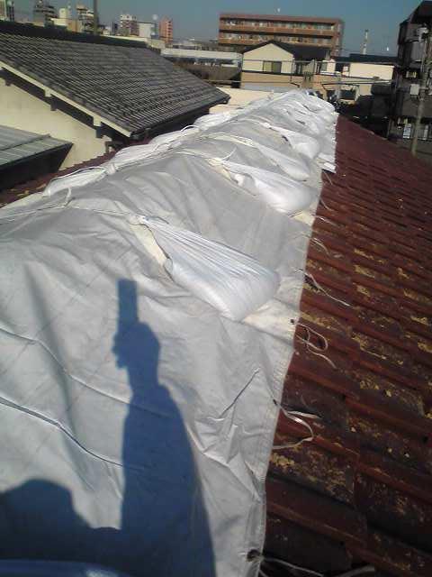 屋根瓦養生…
